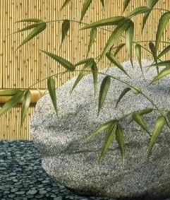bamboo-rock