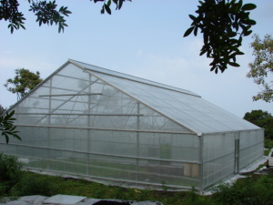 6500 sq ft Conley greenhouse with galvanized steel and lexan