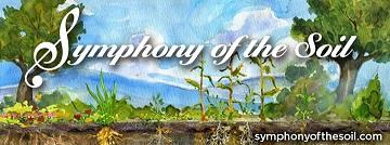 symphony 50