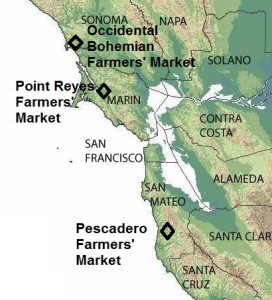 cal markets