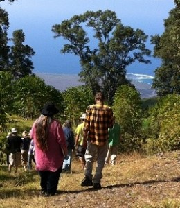 Watershed Hikes in Kona, Kohala and Ka'u