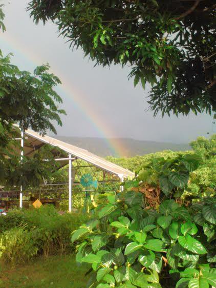 rbow farm