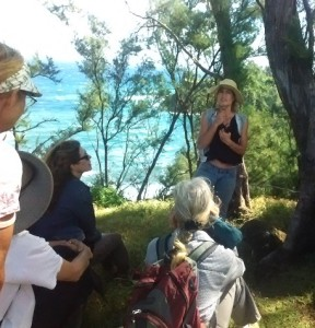Wild Food Foraging Class