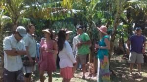 lokahi tour crop