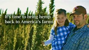hemp families